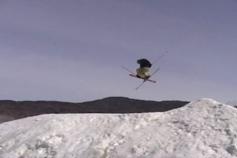 Mute at Smugglers Notch, VT. (Taken from a video)