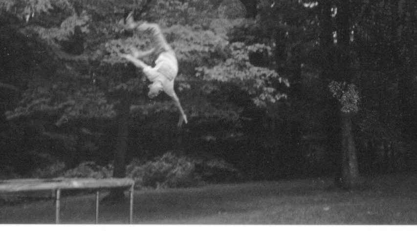 backflip OFF off tramp