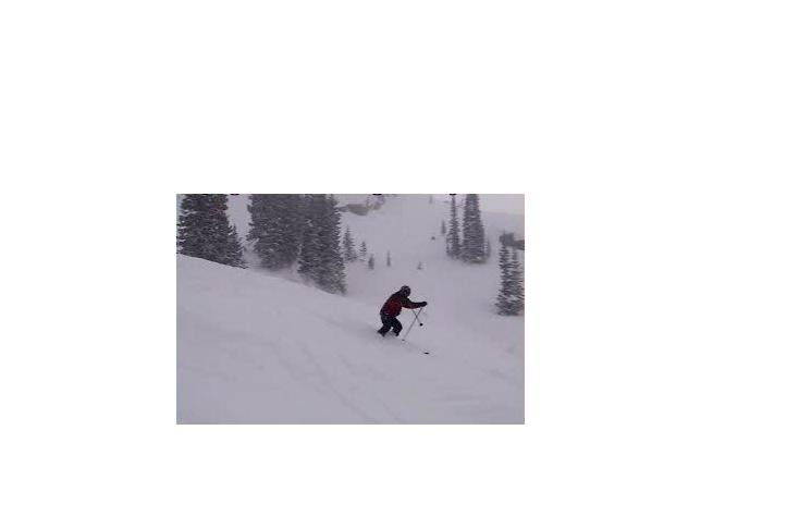 Alta Utah Skiin