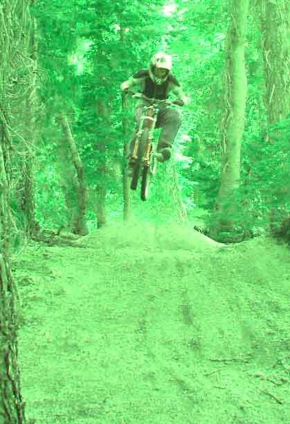 mmmmmmmmm green trees