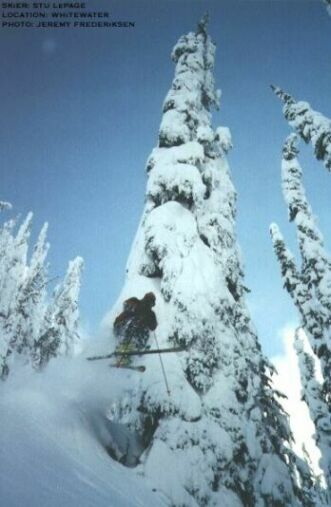 tree skiing...