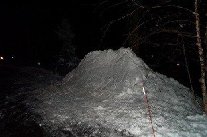 My Backyard QP