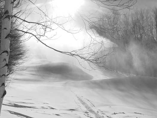 Snow Guns Blazing