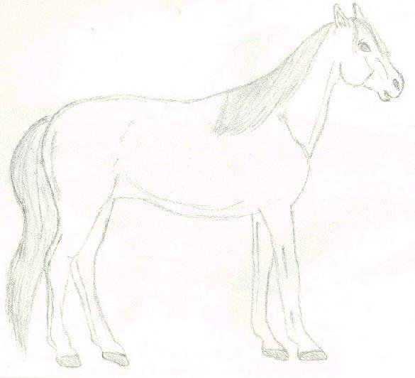 Old sketch of a horse