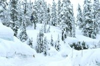 Mt. Baker Road Gap (maybe better qual)