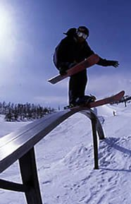 real back slide with out paint(snow blades)