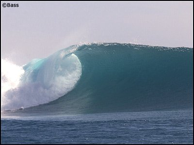 Sick insane wave. My dream wave!