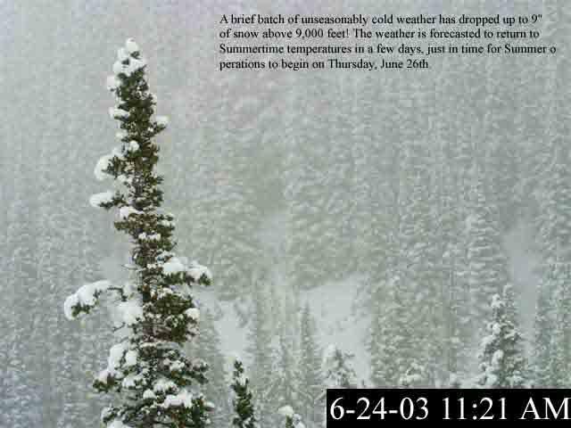 6-24-03 snowfall.....bwahahaha