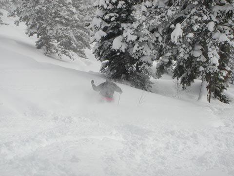 Skiing the pow!