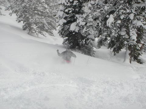 Skiing the pow!