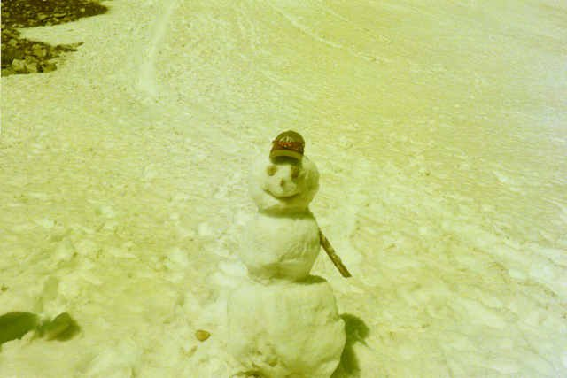 Correction.  Here is the July 15 snowman.