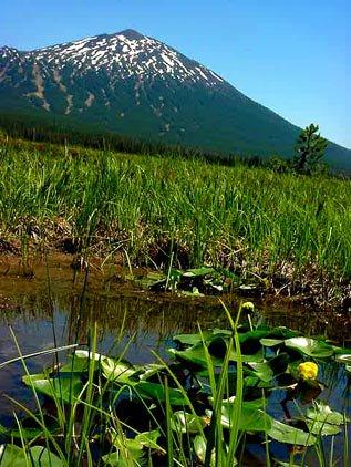 Mt. Bachelor - pond vs. mountain