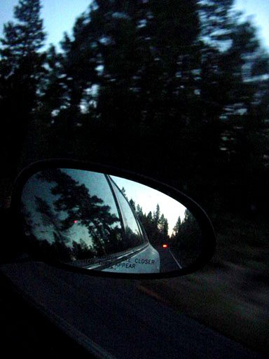 Reflections of Pine