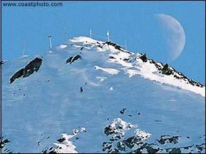 whistler mountain
