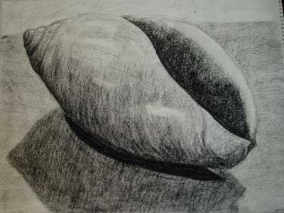 Seashell (conte)