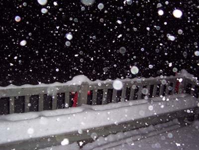 Pretty huh? First snowfall of the season!!