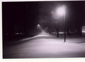 snowy park at night