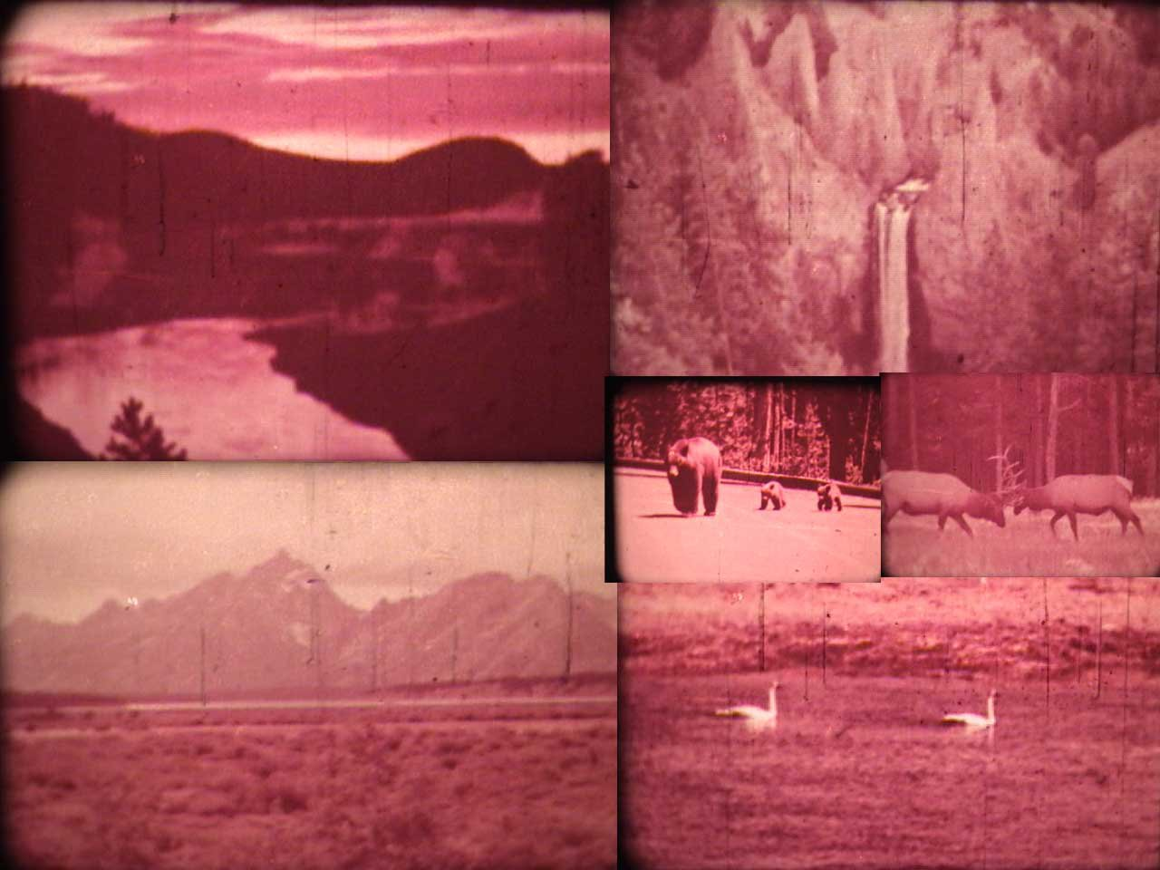 some old 8mm shots that i transfered for my dad