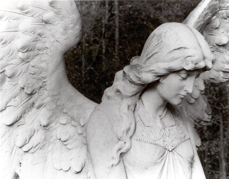 Visions of Angels
