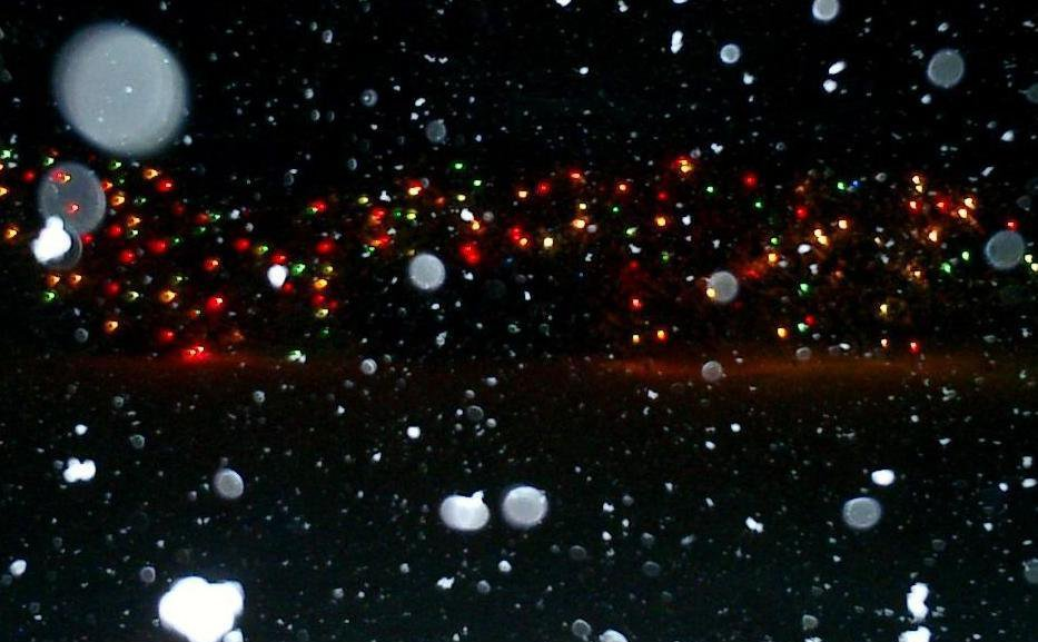 snow falling and lights in background