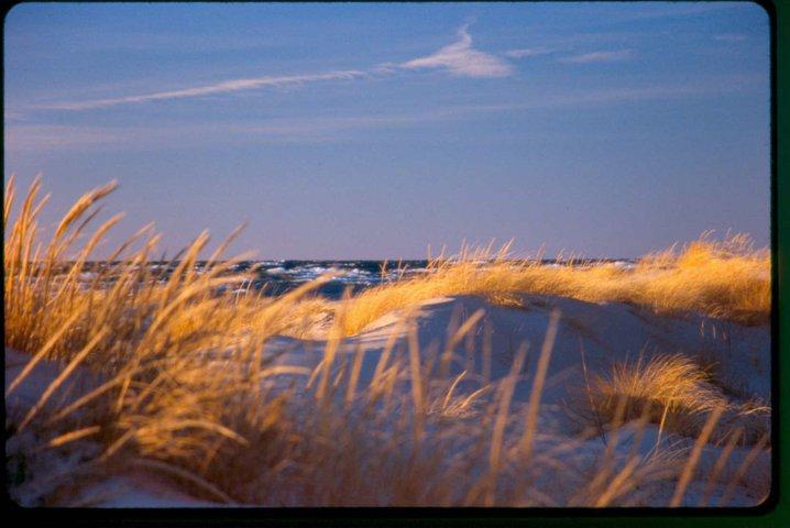 lake michigan and beach in sunset