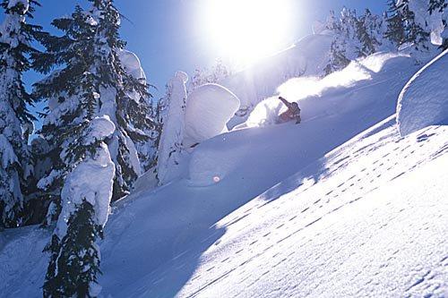 Feb 12, 2004 - Deep in the Stevens backcountry