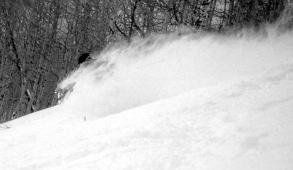 Pow Day at the Canyons- pic 2
