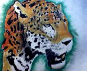 Jaguar - Oil Pastels