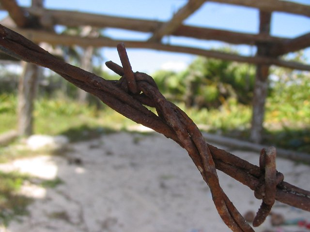 great DOF on rustic barbwire