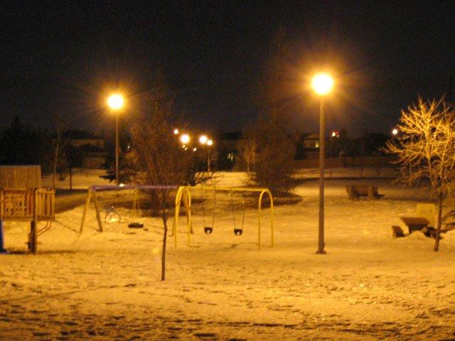 long shutter of park at night