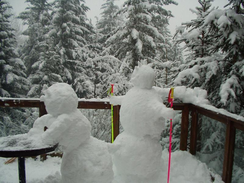 Snowmans are fun