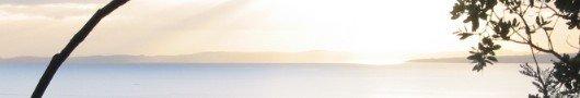 Ocean/Horizon Sunrise Picture