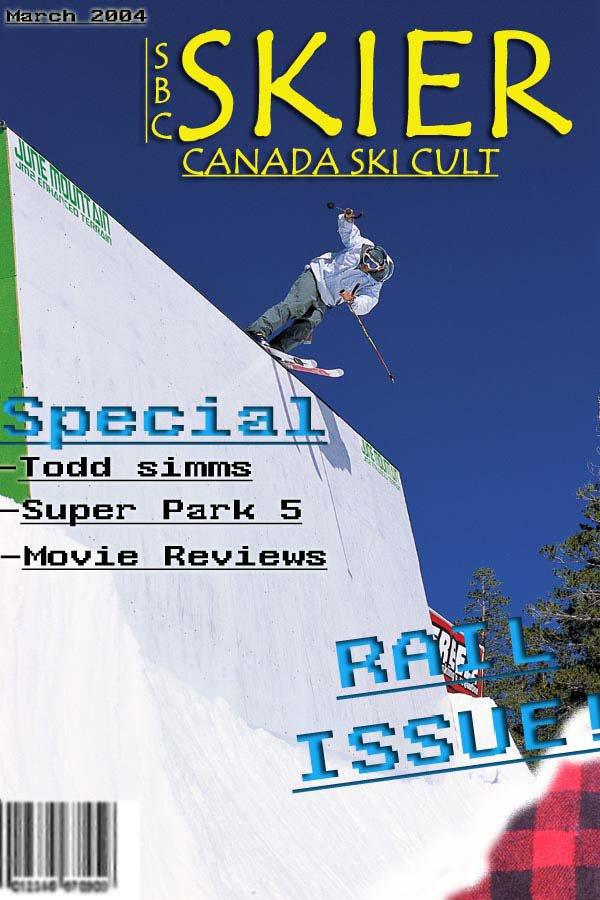 Skier Cover I Made