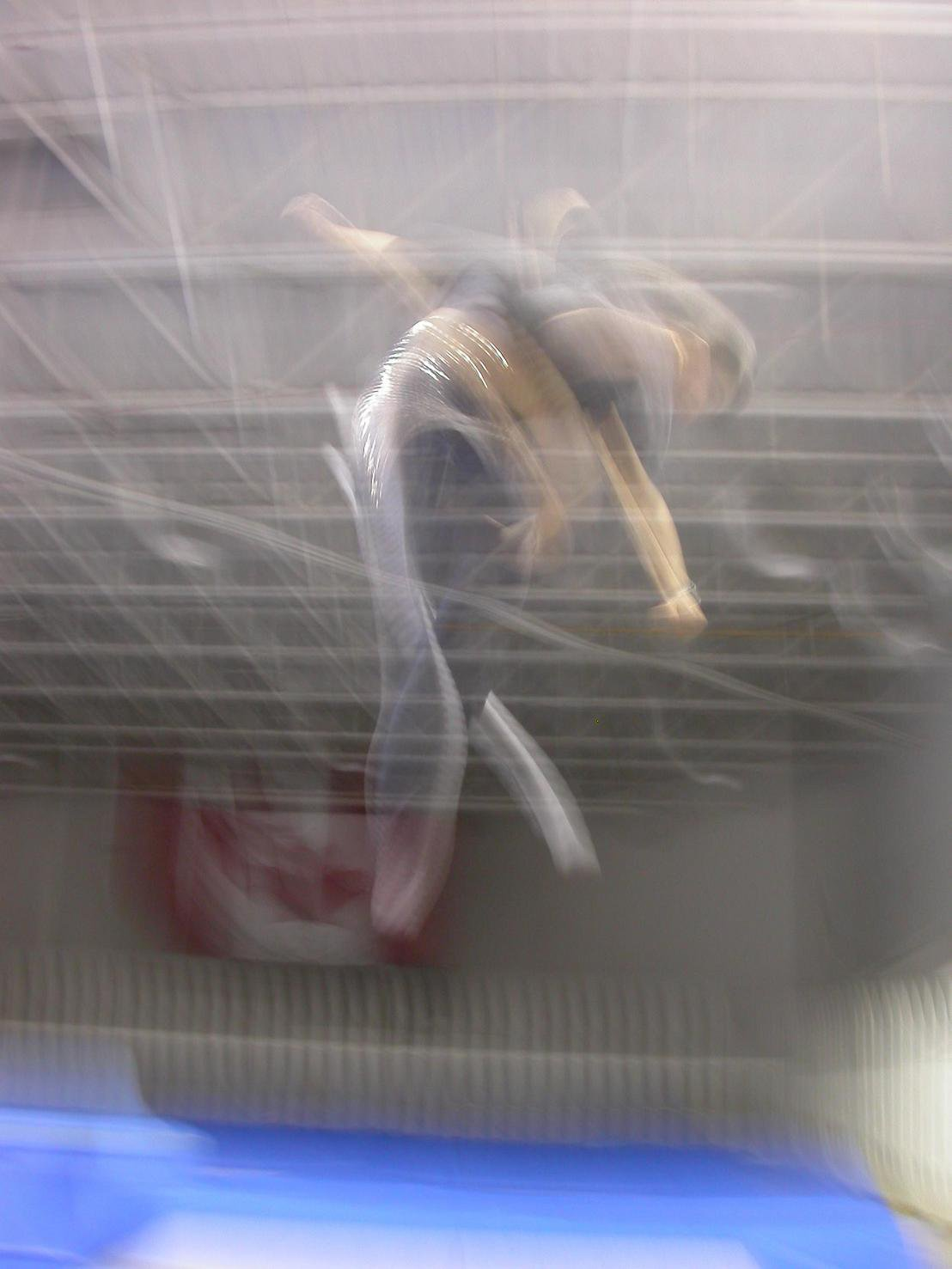 Cork 9 on tramp blurry style