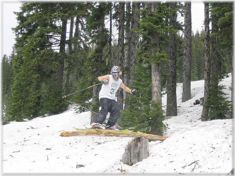 sum lumber action..