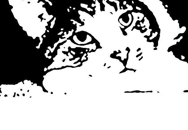 A stamp I did of my cat Vinnie