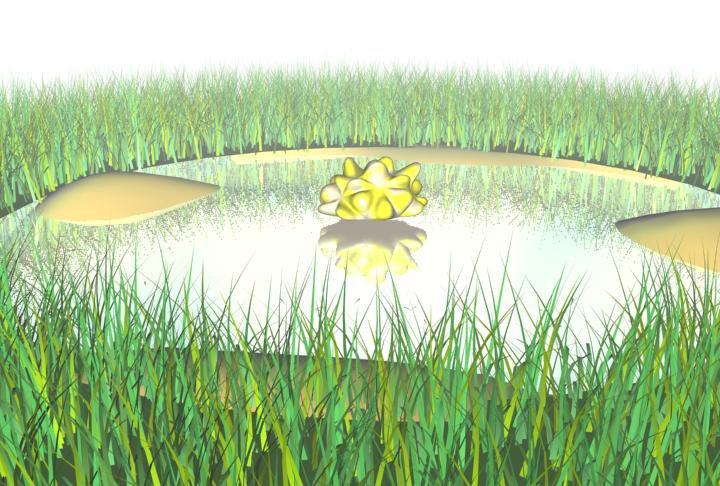 3dsmax pond/puddle scene