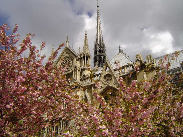 NOTRE DAME probably one of the best pics i've taken...at least i think it's good