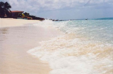 shot i took in aruba at the beach