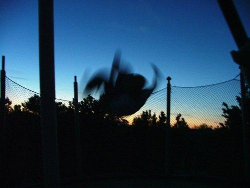 Night flippage