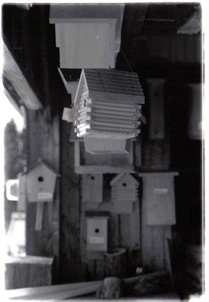 blind man's birdhouse