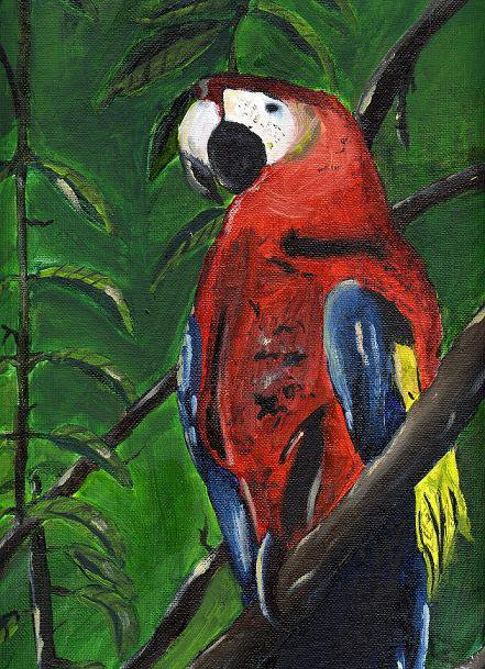 Finished Oil Macaw