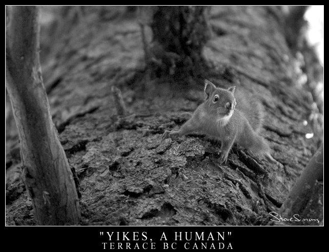 Yikes! A Human!