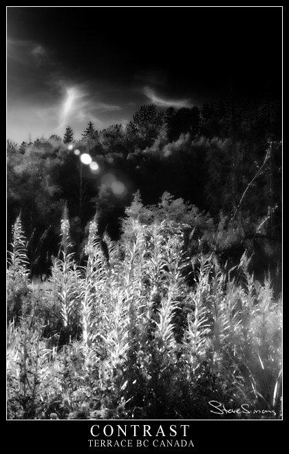 Contrast (Digital Infrared)