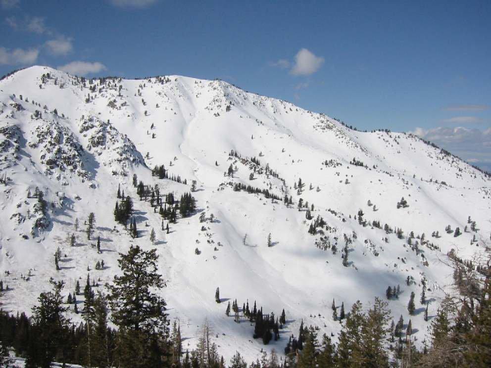 Utah Cat Skiing