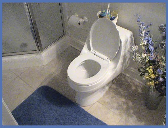 my toilet, enjoy