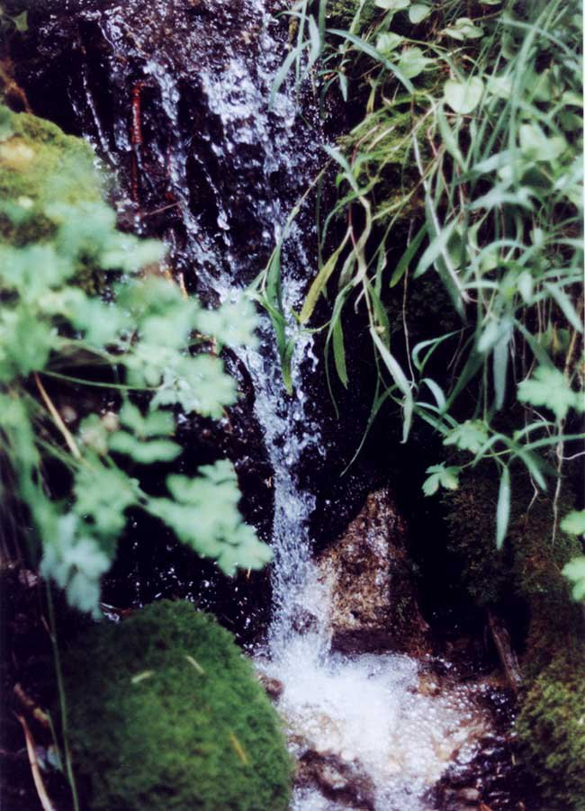 Fast shutter water