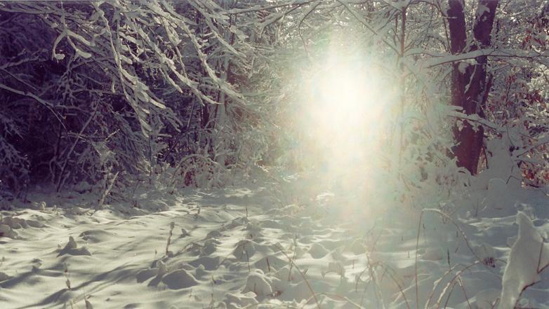 snowy...no...sunny day