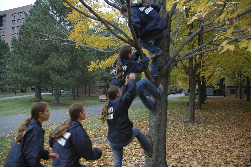 jill climb tree