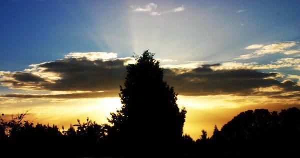 Sunrise at my house